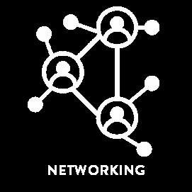 NETWORKING ICONO